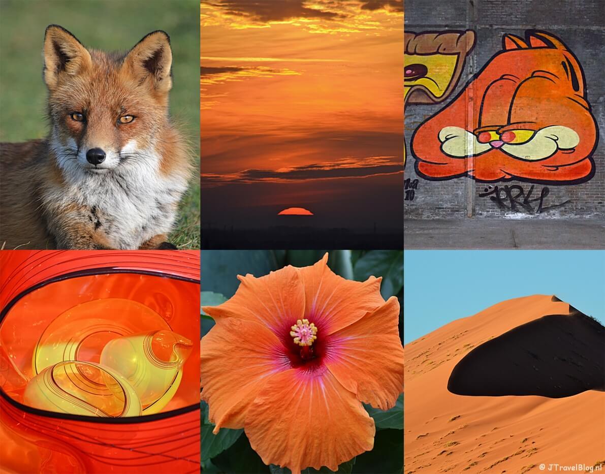 Fotoblog : Oranje Boven