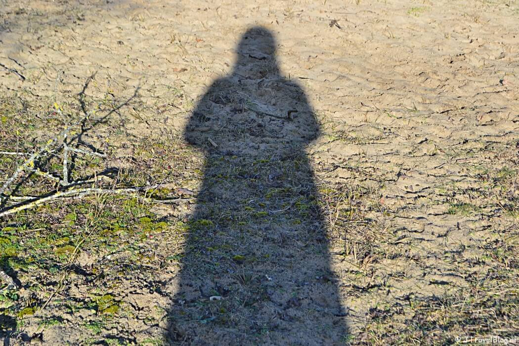 Me and my shadow in de Amsterdamse Waterleidingduinen, januari 2021