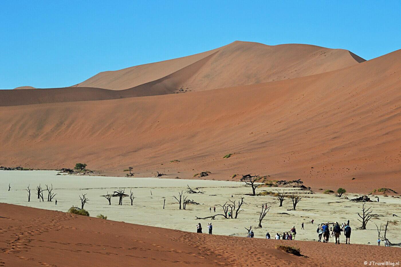 De Deadvlei op dag 12 van mijn 22-daagse rondreis door Zuid-Afrika en Namibië